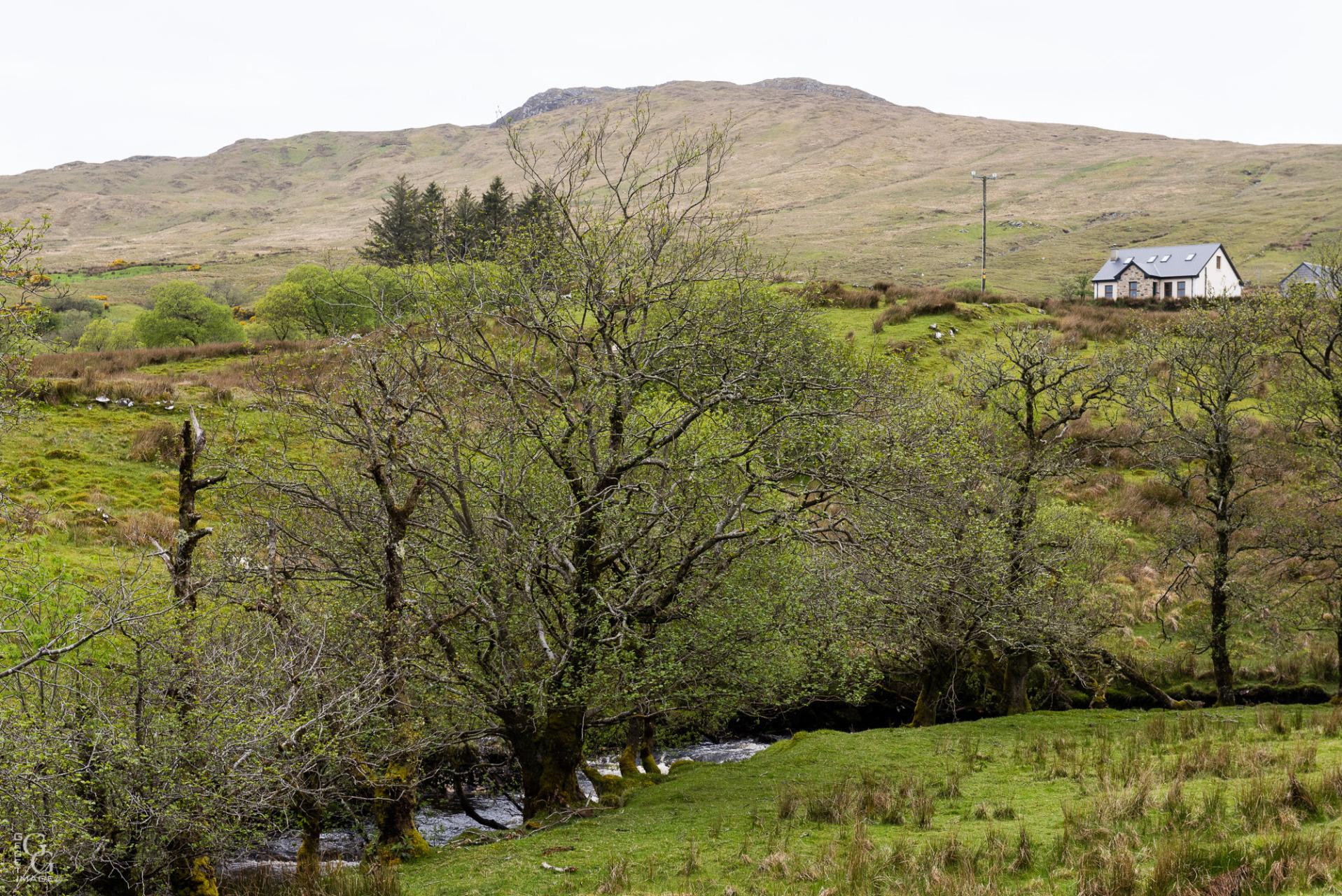 Le gaélique est encore la langue pratiquée.
